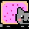 snowleopardlover